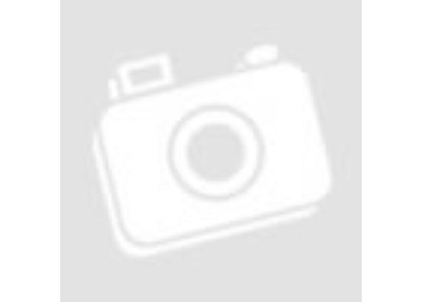 Gluténmentes Fekete Ribizlis Zabkása (Tasakos)